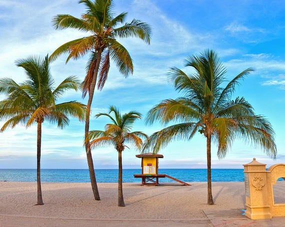 South-Florida-Staycation-for-families-palm-trees-on-beach-with-shack